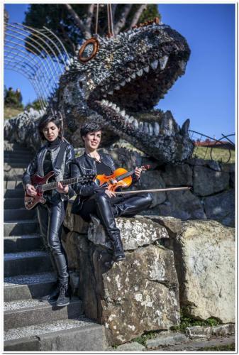 chitarra violino firenze